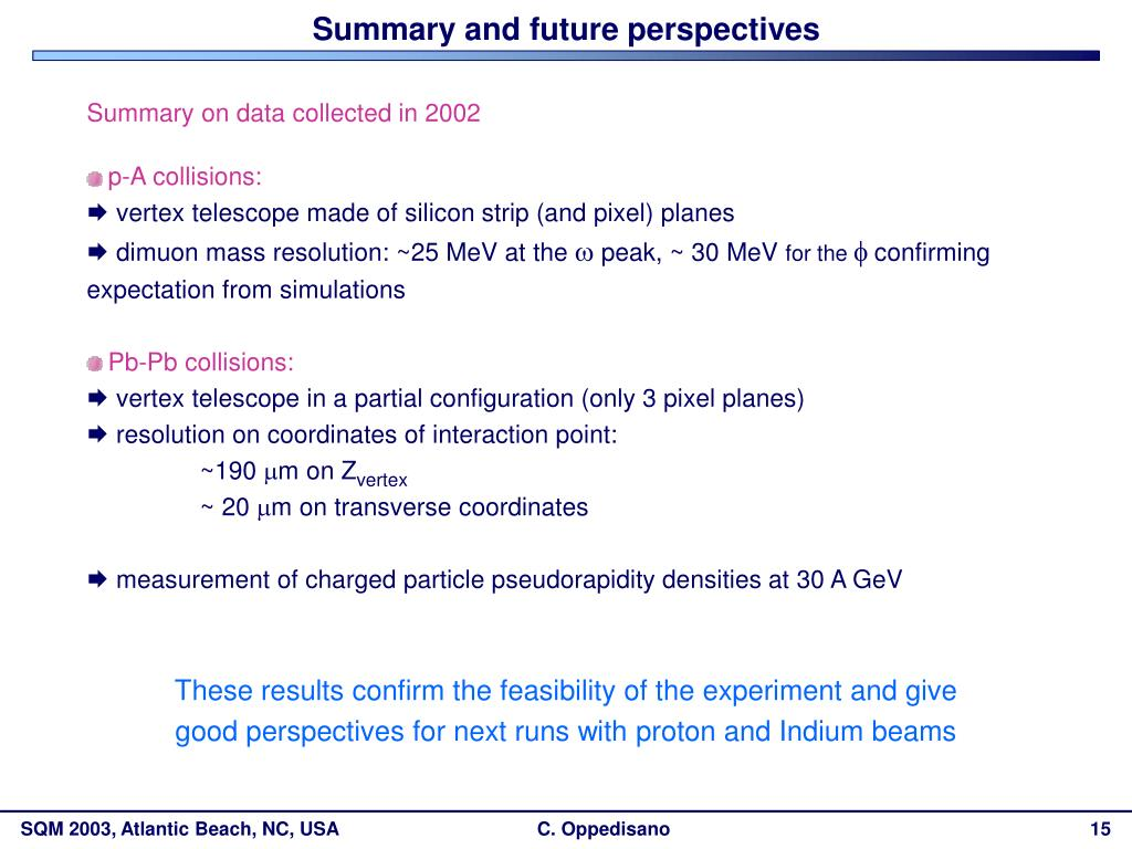 Summary and future perspectives