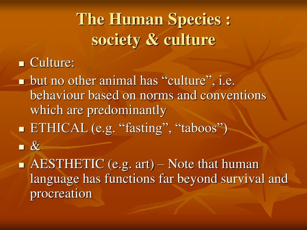 The Human Species :