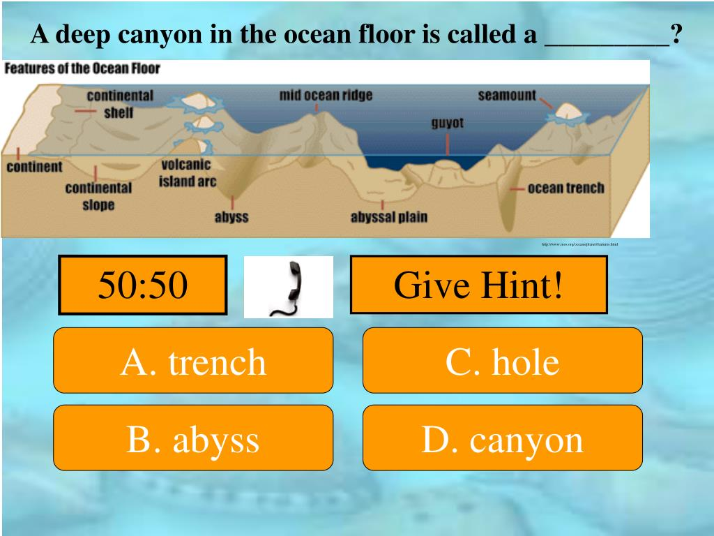 A deep canyon in the ocean floor is called a _________?