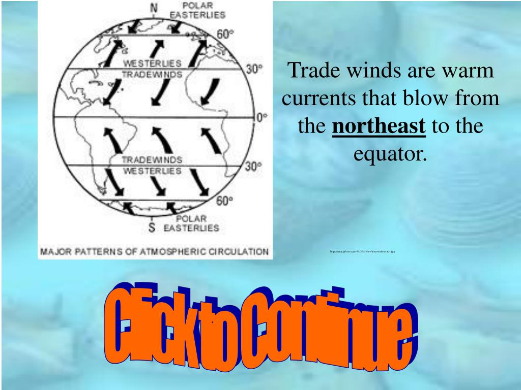 Trade winds are warm currents that blow from the