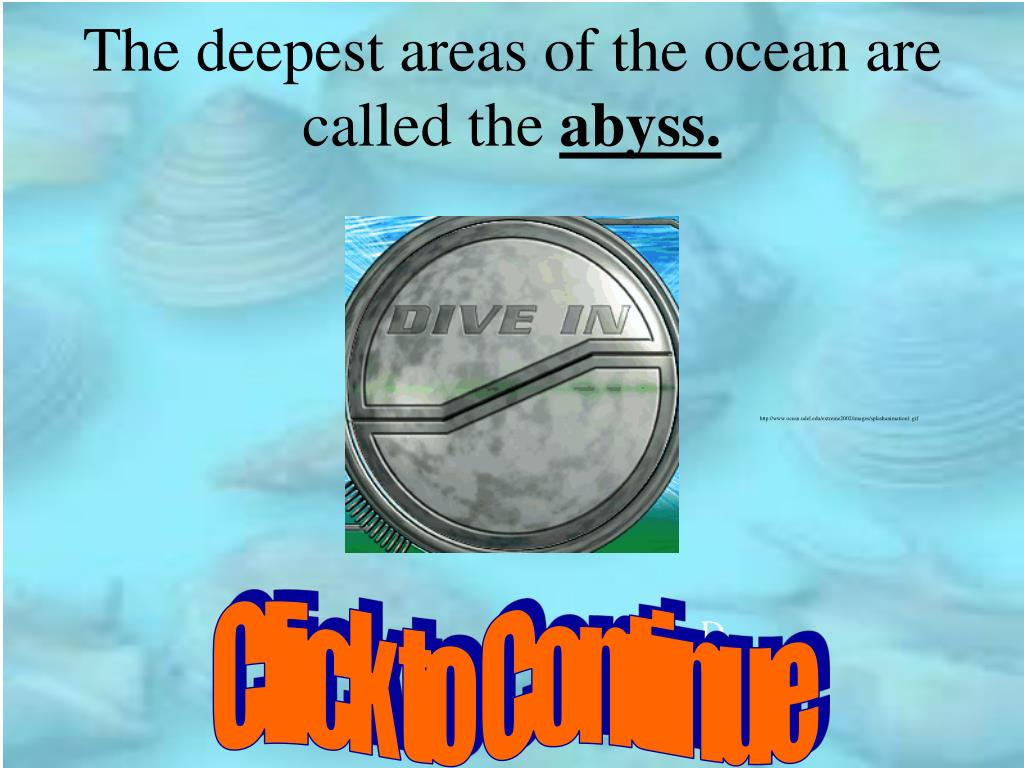 The deepest areas of the ocean are called the
