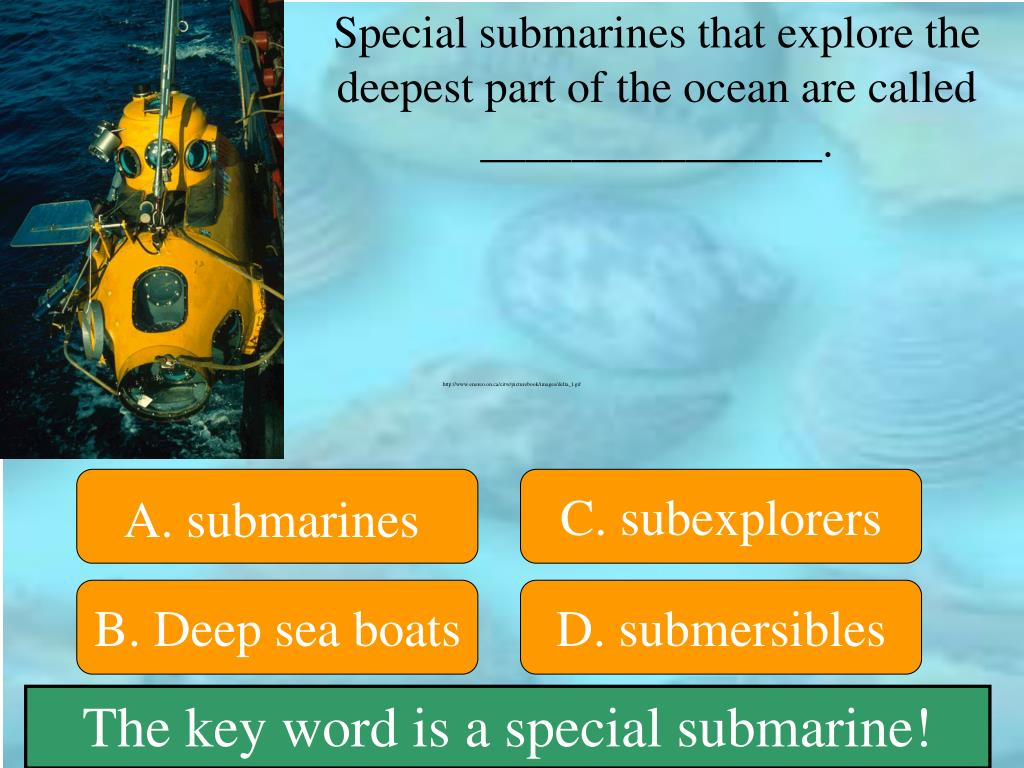 Special submarines that explore the deepest part of the ocean are called _______________.