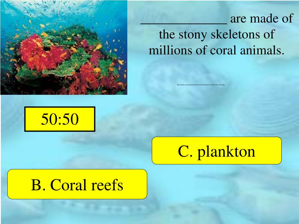 _____________ are made of the stony skeletons of millions of coral animals.
