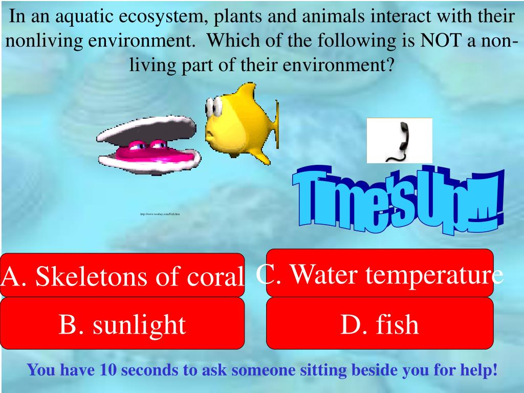 In an aquatic ecosystem, plants and animals interact with their nonliving environment.  Which of the following is NOT a non-living part of their environment?