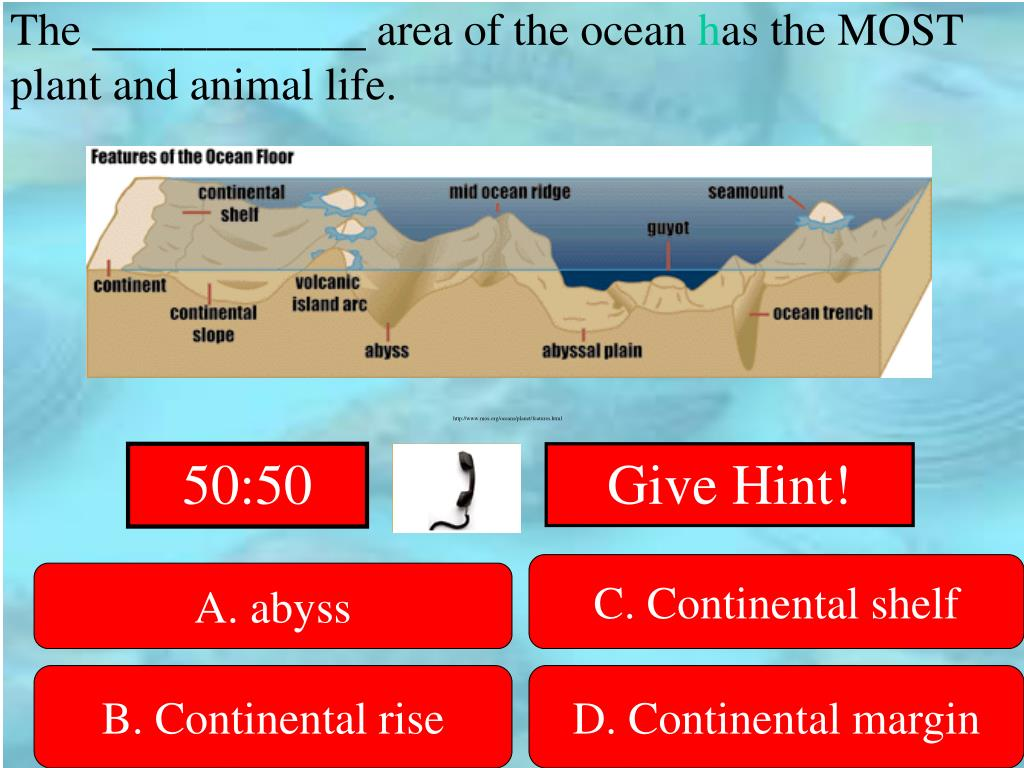 The ____________ area of the ocean