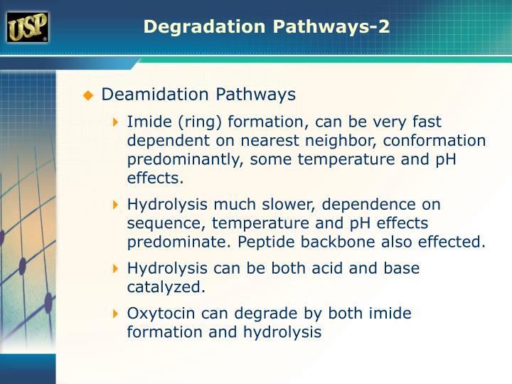 Degradation Pathways-2