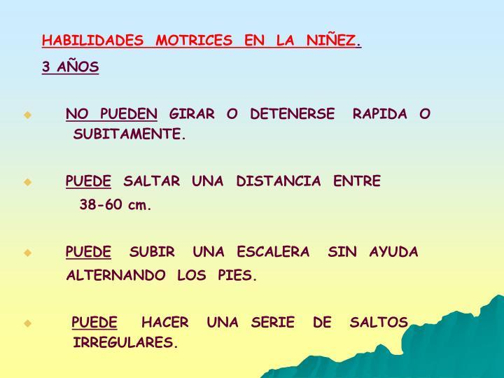 HABILIDADES  MOTRICES  EN  LA  NIÑEZ
