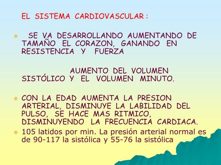 EL  SISTEMA  CARDIOVASCULAR :