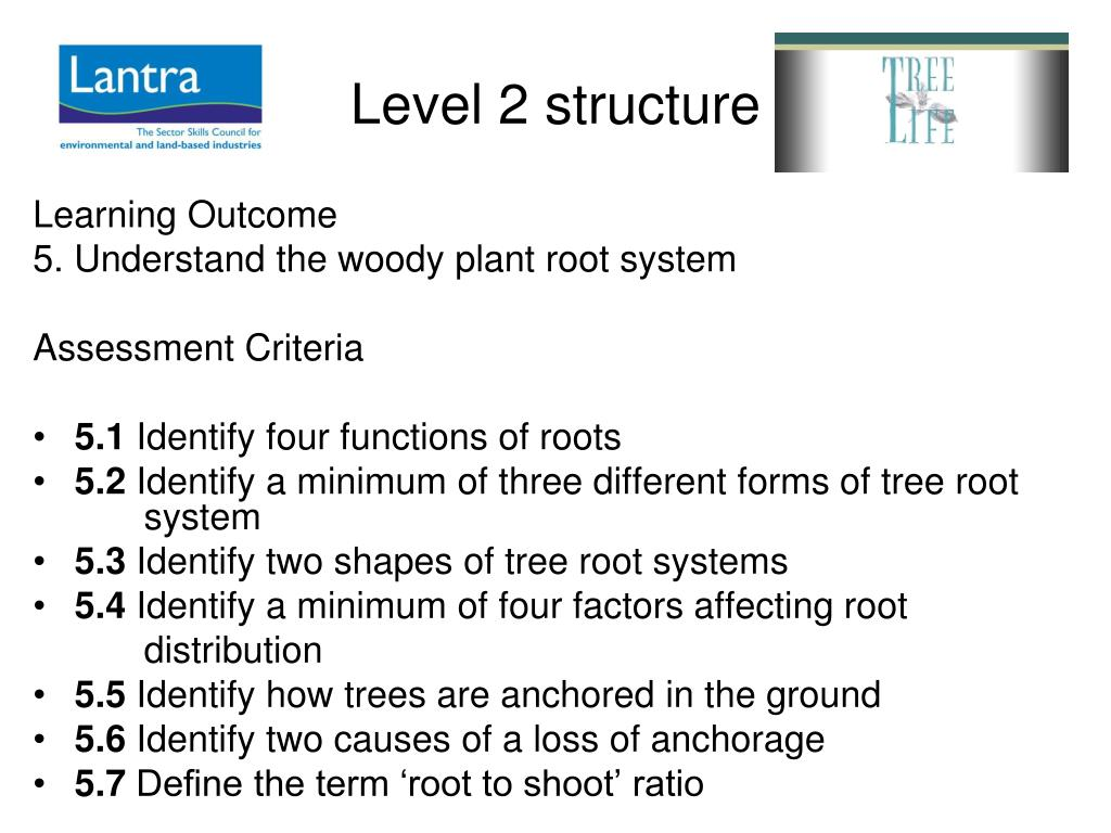 Level 2 structure