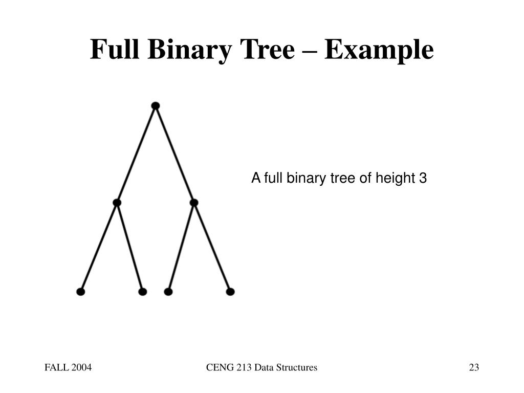 Full Binary Tree – Example