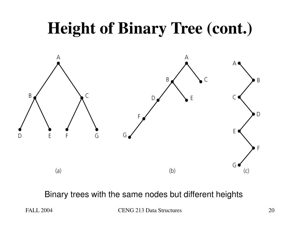 Height of Binary Tree (cont.)