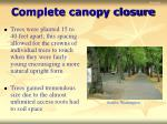 complete canopy closure18