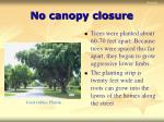 no canopy closure