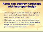 roots can destroy hardscape with improper design