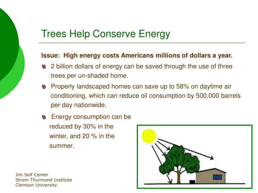 Trees Help Conserve Energy
