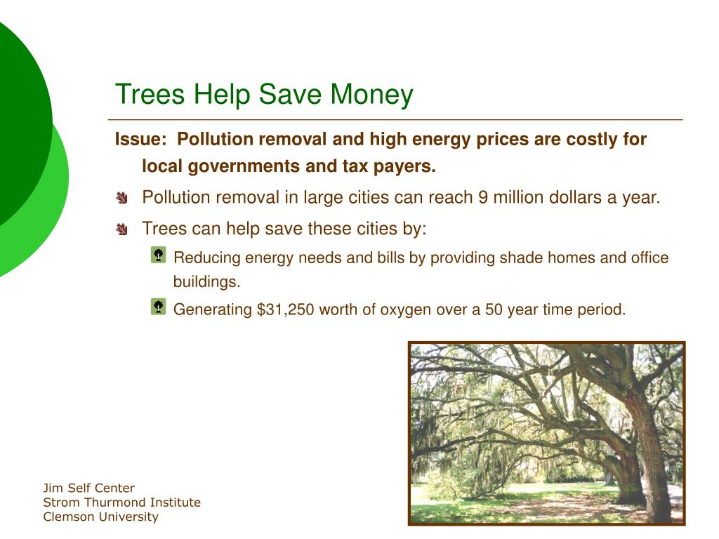 Trees Help Save Money