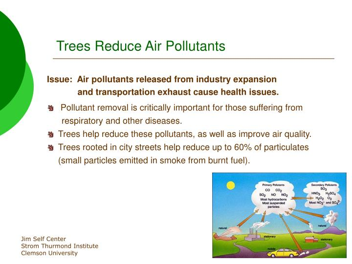 Trees reduce air pollutants