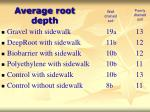 average root depth23