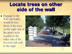 locate trees on other side of the wall