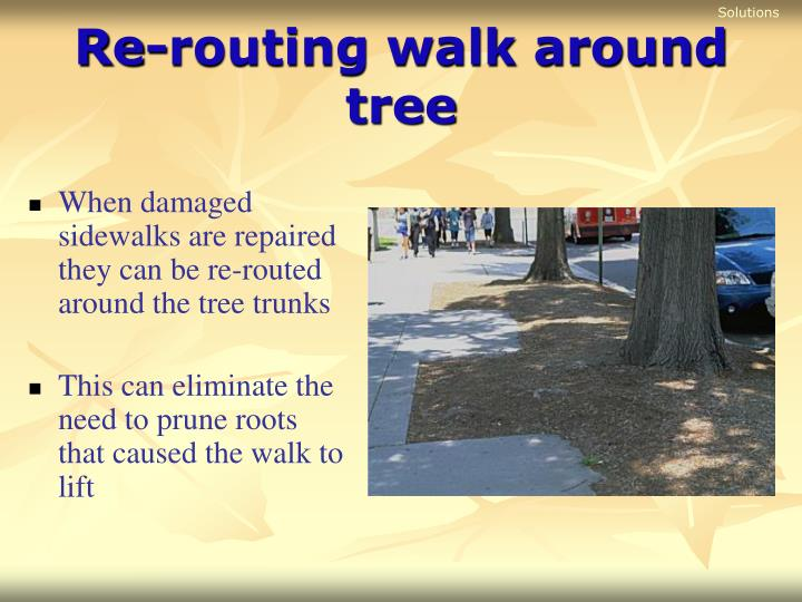 Re routing walk around tree