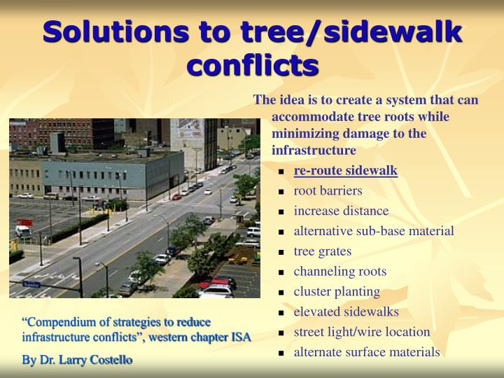 Solutions to tree sidewalk conflicts