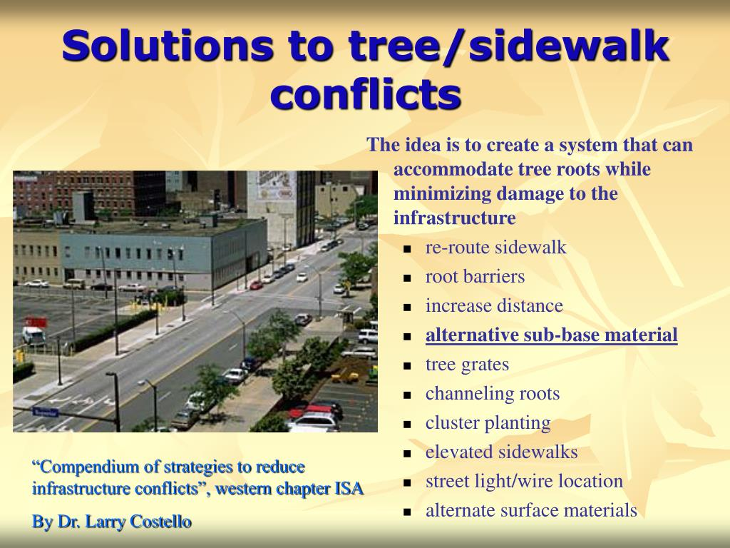 Solutions to tree/sidewalk conflicts