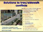 solutions to tree sidewalk conflicts31