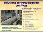 solutions to tree sidewalk conflicts39
