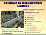 solutions to tree sidewalk conflicts4