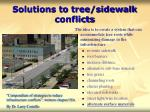 solutions to tree sidewalk conflicts59