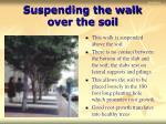 suspending the walk over the soil