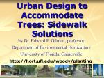 urban design to accommodate trees sidewalk solutions62