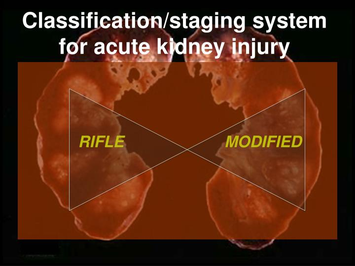 Classification/staging system for acute kidney injury