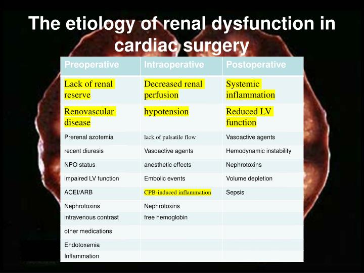 The etiology of renal dysfunction in