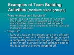 examples of team building activities medium sized groups