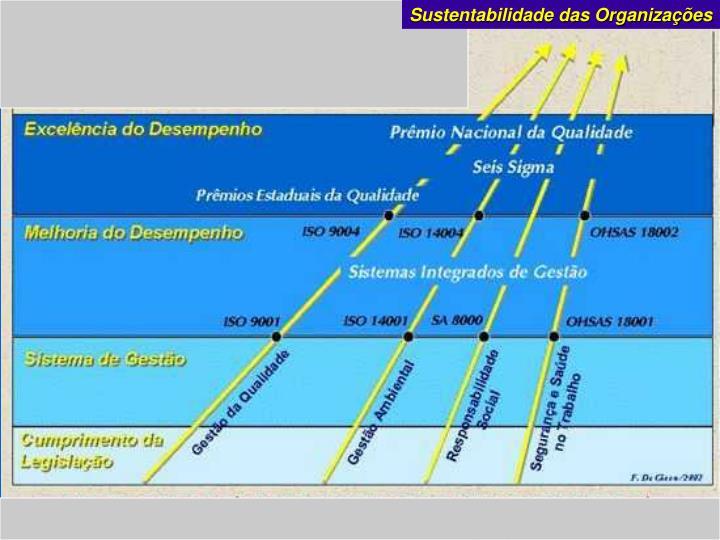 Sustentabilidade das Organizações