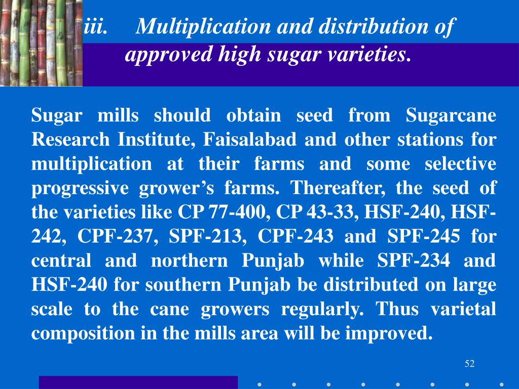 iii.	Multiplication and distribution of approved high sugar varieties.