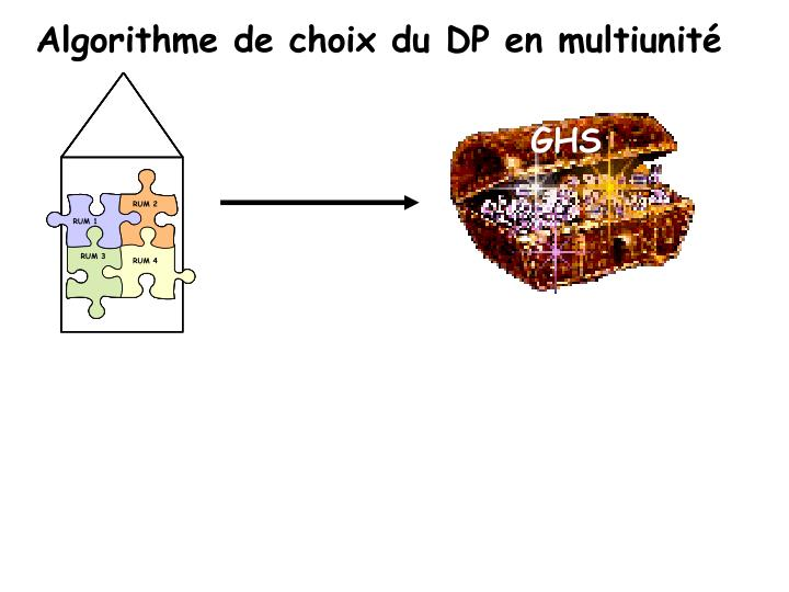 Algorithme de choix du DP en multiunité