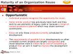 maturity of an organization reuse34