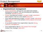 project management46
