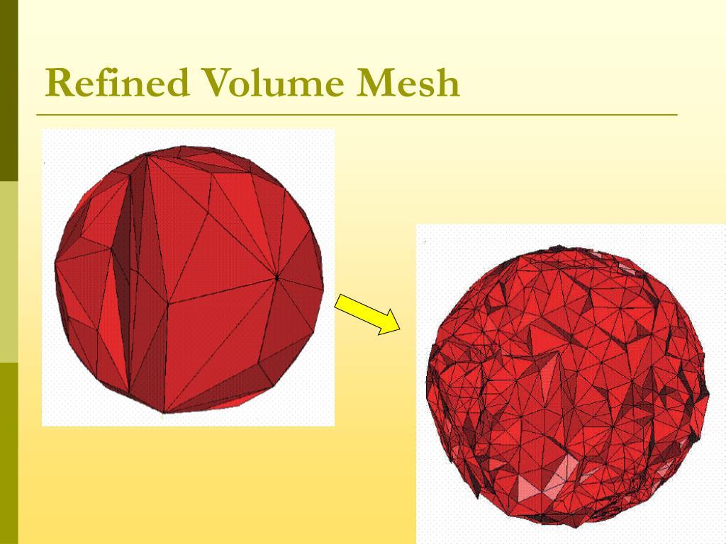 Refined Volume Mesh