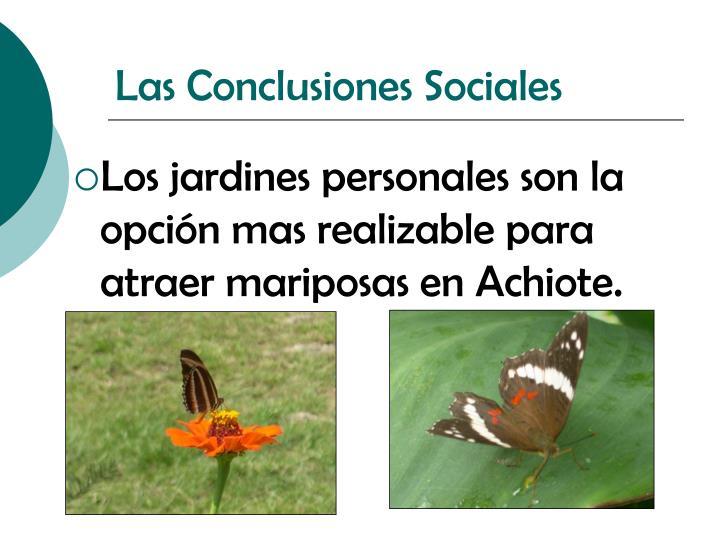 Las Conclusiones Sociales
