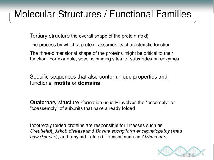 Molecular Structures / Functional Families