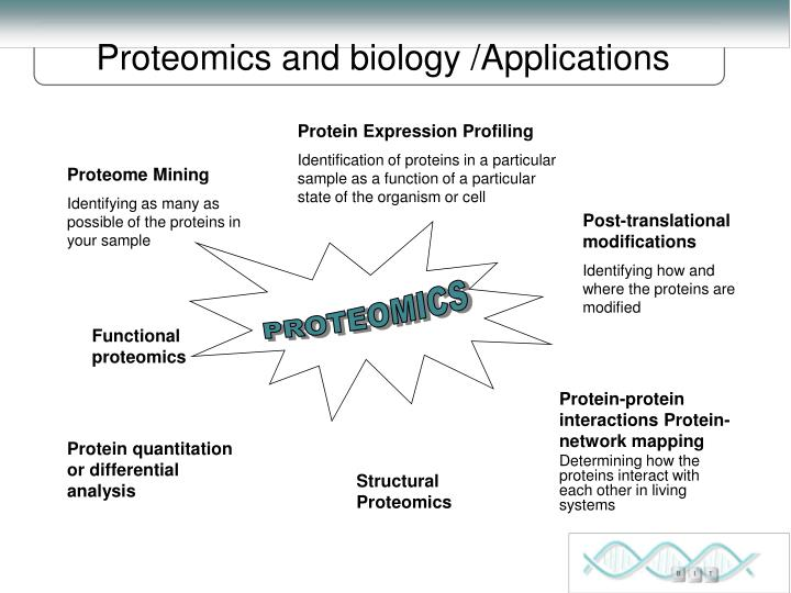 Proteomics and biology /Applications