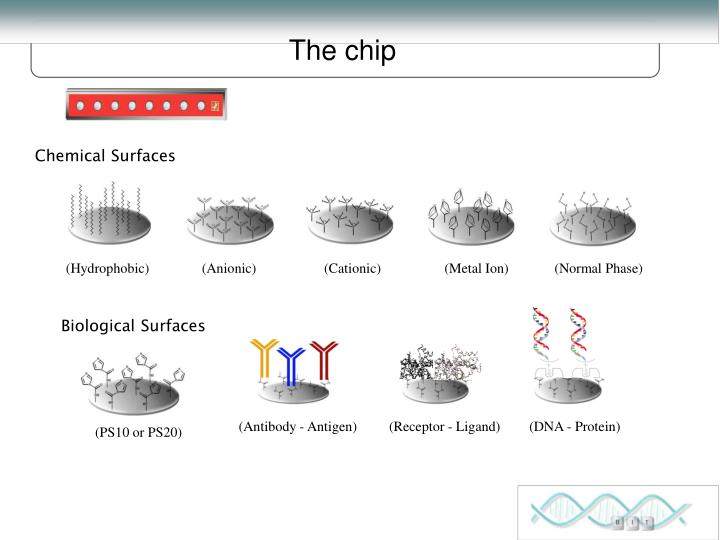 Chemical Surfaces