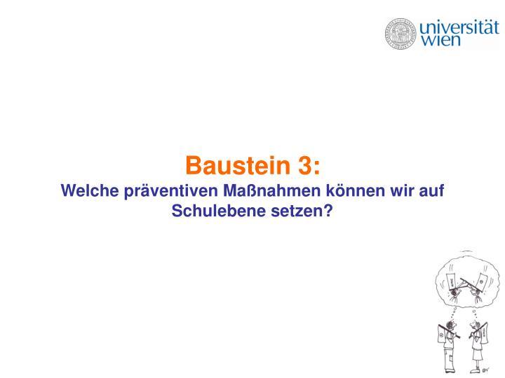 Baustein 3:
