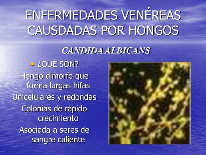 ENFERMEDADES VENÉREAS CAUSDADAS POR HONGOS