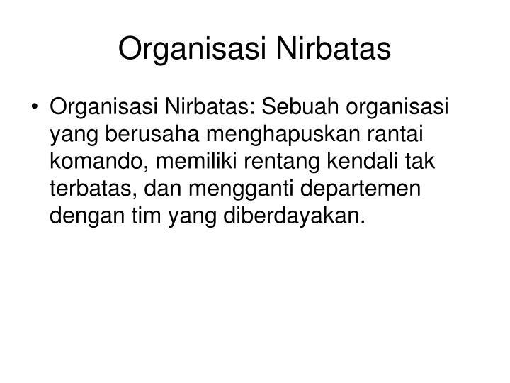 Organisasi Nirbatas
