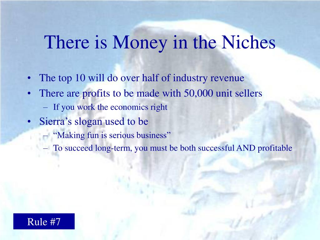 There is Money in the Niches