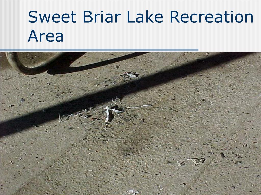 Sweet Briar Lake Recreation Area